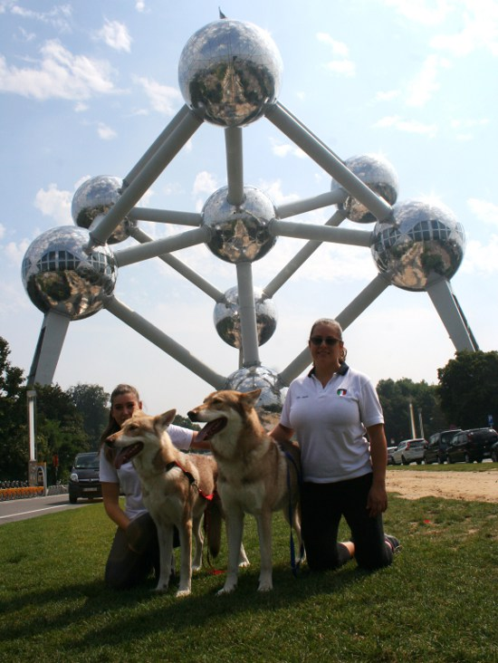FOS-team all'ATOMIUM di Bruxelles