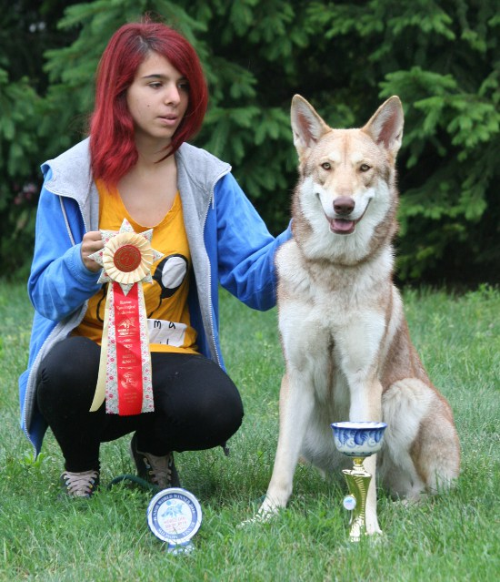 WORLD DOG SHOW MOSCA 2016
